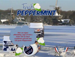 container FRESH PEPPERMINT [Custom Made]